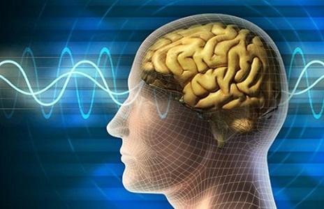 brain-functions-enhance-memory